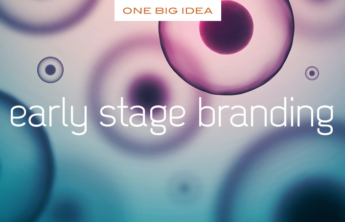 One Big Idea: Early Stage Branding